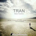 Tran - Mistigris (N\'to Remix)