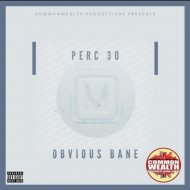 Obvious Bane & Dro Fee - Say Something (feat. Dro Fee) (Original Mix)