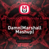 Raw Fish x Mixon Spencer & Dj Butesha x DJ Kuba & Neitan - Damn (Marshall Mashup)