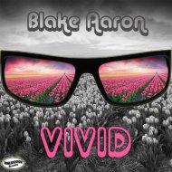 Blake Aaron - Vivid (Radio Single)