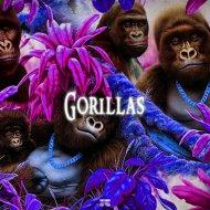 RICH DY - Gorillas (Original Mix)