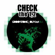 Groovetonic & Olivian DJ - Check The 1,2 (Original Mix)