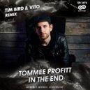Tommee Profitt - In The End (Tim Bird & Vito Remix)