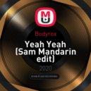 Bodyrox - Yeah Yeah (Sam Mandarin edit)