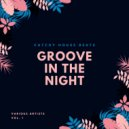 Albert Aponte, Chris Groovejey - The Shaker (Original Mix)