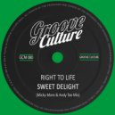 Right To Life - Sweet Delight (Micky More And Andy Tee Mix)