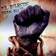 Mr. Eclectic & Sean Ali - F-An-Maze (Original Mix)