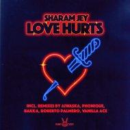 Sharam Jey - Love Hurts (Vanilla Ace Remix)
