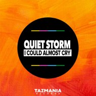 Quiet Storm - I Could Almost Cry (SoulShaker Remix)
