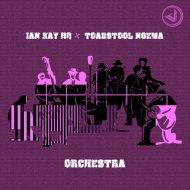 Ian Kay HQ, Toadstool Ngema - Orchestra (Original Mix)