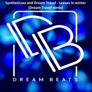 Syntheticsax & Dream Travel - Leaves In Winter (Dream Travel Remix)