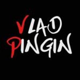 Vlad Pingin
