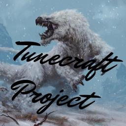 TUNECRAFT PROJECT