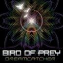 Bird Of Prey - Kiva ()