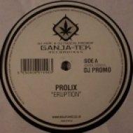Prolix - Eruption ()