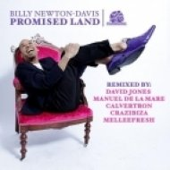 Billy Newton Davis - Promised Land (Calvertron Dubstep Mix)