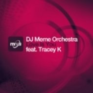 DJ Meme Orchestra feat. Tracey K - Love Is You (Instrumental)