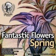 Fantastic Flowers - Midnight Express  (Rework 2011)