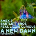 Amex & Bartlett Bros. feat Lizzie Curious - A New Dawn - Tempo Giusto Remix ()