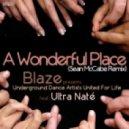 Blaze pres. UDAUFL feat. Ultra Nate - A Wonderful Place  (Sean McCabe Classic Mix)