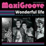 Maxigroove - Wonderful Life  (Radio Mix)