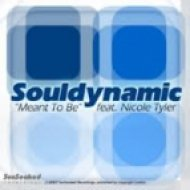 Souldynamic Feat Nicole Tyler - Meant To Be  (Park Street Remix)