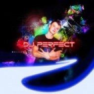 Dj_Perfect_&_Johny Ned -  Liebesnest  (Remix)