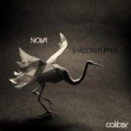 Nova - Morph  (Original Mix)