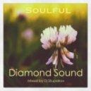 Dj Stupakov - Soulful_House ()
