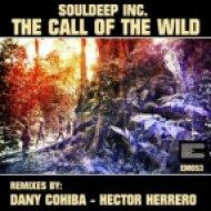 SoulDeep Inc - The Call Of The Wild  (Hector Herrero Remix)
