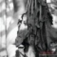 Josh Bartoli - Everybody Down  (Aquinoise remix)