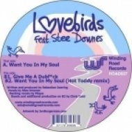 Lovebirds ft. stee downes - Want You In My Soul  (Scott Diaz funk excursion)