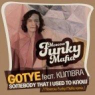Gotye feat. Kimbra - Somebody That I Used To Know  (Moscow Funky Mafia Remix)