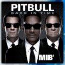 Pitbull - Back In Time  (Gregor Salto Remix)