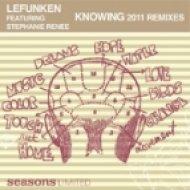 Lefunken feat. Stephanie Renee - Knowing  (Soletek Vocal Mix)