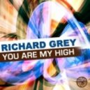 Richard Grey - You Are My High  (David Jones Remix)
