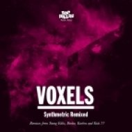 Voxels - With You  (Young Edits Remix)