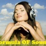 Formula OF Sound - Formula Of Emotions #12  ()