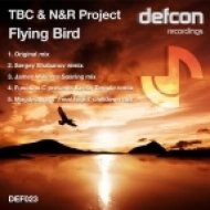 TBC & N&R Project - Flying Bird  (Sergey Shabanov Remix)