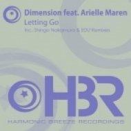 Dimension feat Arielle Maren - Letting Go  (Shingo Nakamura Remix)