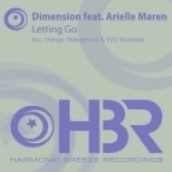 Dimension feat Arielle Maren - Letting Go  (Edu Progressive Remix)