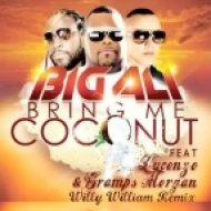 Big Ali Ft. Lucenzo & Gramps Morgan - Coconut Rum  (Willy William Remix)
