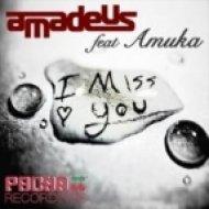 Amuka, Benny Maze, DJ Amadeus - I Miss You  (Benny Maze Remix)