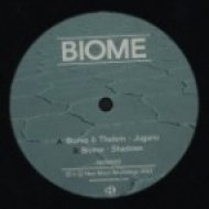 Biome - Shadows   (Original mix)