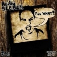 Audio Sleaze - Darkness  (Original Mix)