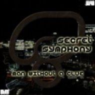 Man Without A Clue - Secret Symphony ()