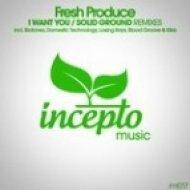 Fresh Produce - I Want You  (Losing Rays Remix)