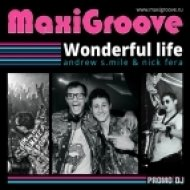 Maxigroove - Wonderful Life  (Leo Burn Remix)