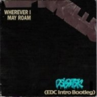 Metallica - Wherever I May Roam  (Dskotek\'s EDC Intro Bootleg)