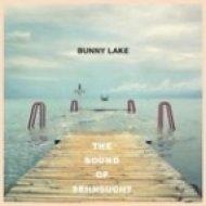 Bunny Lake - All The Screens Stay Dark Tonight ()